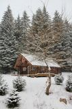 Cozy Canadian Wilderness Cabin. A magical winter scene with an inviting log cabin, accented by white lights, and a Canadian flag, set against a snowy backdrop of Stock Images