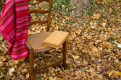 Cozy chair Royalty Free Stock Images