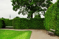 Free Cozy City Garden With Old Wooden Benches Stock Photos - 31960423