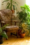 Cozy corner at home. Cozy armchair in warm morning lights at home stock images