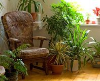 Cozy corner at home. In the morning lights Stock Photo