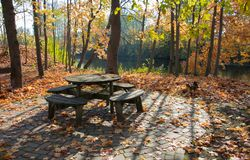 A cozy corner for relaxing in the autumn park on a bright sunny day. Golden autumn stock photography