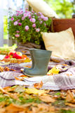 Cozy decoration in autumn park Stock Image