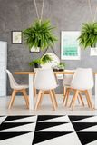 Cozy dining room interior. With an elegant dining table and fern plants hanging over the table Royalty Free Stock Photo