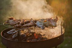 Cozy evening barbeque party in park Royalty Free Stock Photos