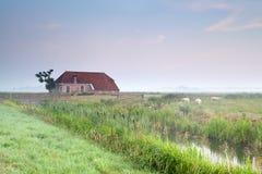 Cozy farmhouse in misty morning Stock Image