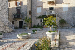 Cozy front yard. Perast town. Montenegro Royalty Free Stock Photos