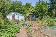 Cozy greenhouse Stock Photos