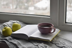 Cozy home still life: cup of hot coffee, green apples and opened book with warm plaid on windowsill against snow Royalty Free Stock Photo