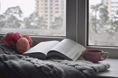 Cozy home still life: cup of hot coffee, spring flowers and opened book with warm plaid on windowsill against snow. Landscape outside. Springtime concept, free stock photo
