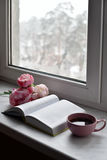 Cozy home still life: cup of hot coffee, spring flowers and opened book with warm plaid on windowsill against snow Stock Photography