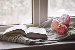 Cozy home still life: spring flowers and opened book with warm plaid on windowsill. Springtime concept, free copy space.  stock photography