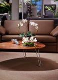 Cozy interior Royalty Free Stock Image