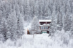 Cozy isolated home in winter forest Stock Image