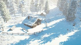 Cozy little hut and snowy firs Top-down view Stock Photo