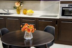 Cozy modern kitchen interior. With furniture Royalty Free Stock Photo