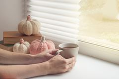 Cozy mood with tea cup and close up hand with cozy decor in home in window feeling romantic mood. Cozy mood with tea cup and close up hand with cozy decor in stock image