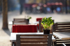 Cozy outdoor cafe Royalty Free Stock Images
