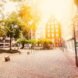 The cozy patio with green in the center of Cologne. Royalty Free Stock Image