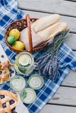 Cozy picnic near lake Stock Images