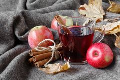 Cozy plaid in fall day with hot alcoholic drink mulled wine stock image