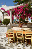 Cozy restaurant under flowering trees  in the street of Chora in Mykonos, Cyclades Island. Greece Royalty Free Stock Photography