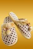 Cozy slippers. Pair of cozy and warm slippers on a colorful background with clipping path stock photo