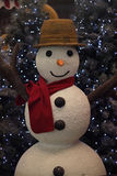 Cozy Snowman Stock Images