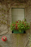 Cozy vintage Italian cottage window with flowers blooming Royalty Free Stock Image