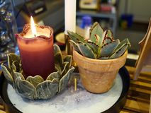 Cozy warm atmosphere by candle and a plant by the window royalty free stock photos