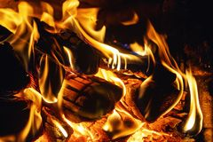 Cozy warm tongues of the flame. Tree in the fire stock images