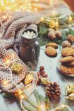 Cozy winter and Christmas setting with hot cocoa with marshmallows and homemade cookies Royalty Free Stock Photos