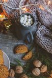 Cozy winter and Christmas setting with hot cocoa with marshmallows and homemade cookies Stock Images