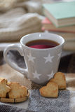 Cozy winter cup with cookies Royalty Free Stock Photo
