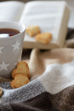 Cozy winter cup with cookies Stock Photo