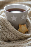 Cozy winter cup with cookies Royalty Free Stock Photos