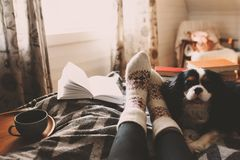 Cozy winter day at home with cup of hot tea, book and sleeping do royalty free stock photography