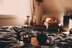 cozy winter morning with cup of hot tea royalty free stock images