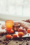 Cozy winter morning at home with fruits, nuts and modern glass, selective focus Stock Images