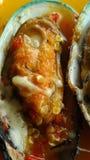 Cozza della cozza della Nuova Zelanda affettata con la salsa dello srafood immagini stock libere da diritti