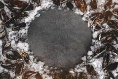Cozze crude fresche su ghiaccio scheggiato su fondo di pietra scuro Frutti di mare, vista superiore, disposizione piana, spazio d fotografia stock libera da diritti