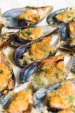 Cozze di Gratinated, alimento Mediterraneo fotografia stock