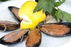 Cozze, mussels, plateau de fruits de mer, frutti di mare Stock Image