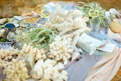Cozze sul piatto sulla tovaglia, sul controllo del ristorante, sull'aloe e sui coralli decorati Immagini Stock Libere da Diritti