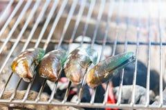 Cozze sulla griglia, barbecue festivo delizioso sulla spiaggia di sabbia i fotografia stock