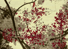Cópia cinzenta e vermelha da flor no creme marcado Foto de Stock