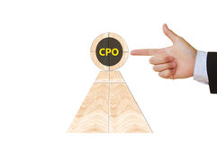 CPO Images stock