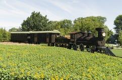 CPR-trein 374 Royalty-vrije Stock Fotografie