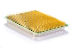 CPU 1. Central microprocessor with gold contacts Royalty Free Stock Image