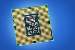 CPU. Central microprocessor with gold contacts Royalty Free Stock Image